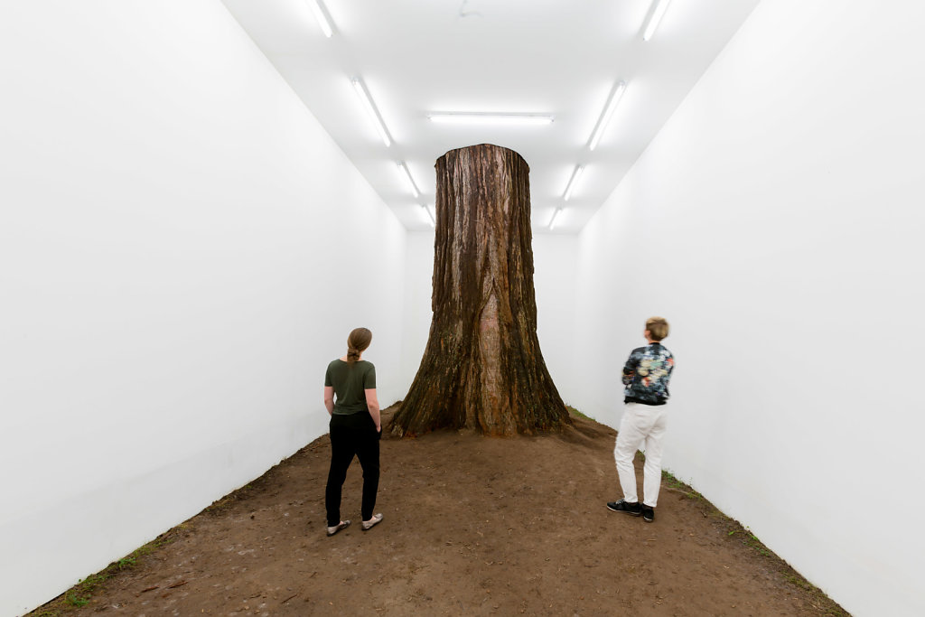 white cube in Baden baden natural lightning